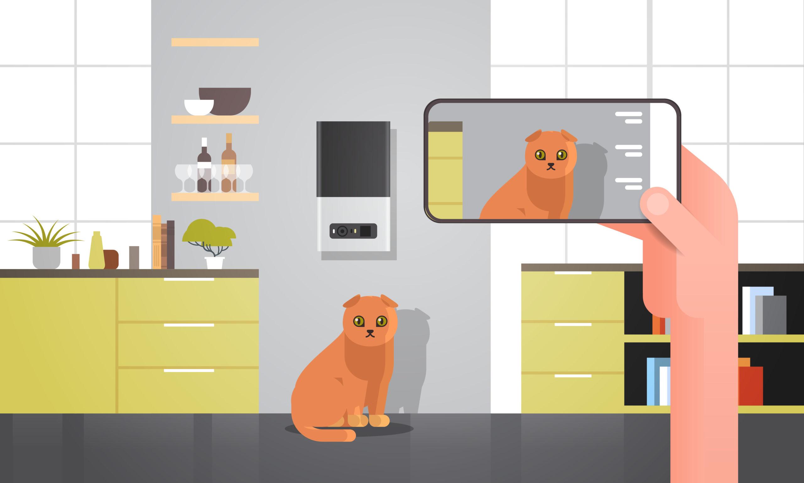 自宅での猫との生活のメリット