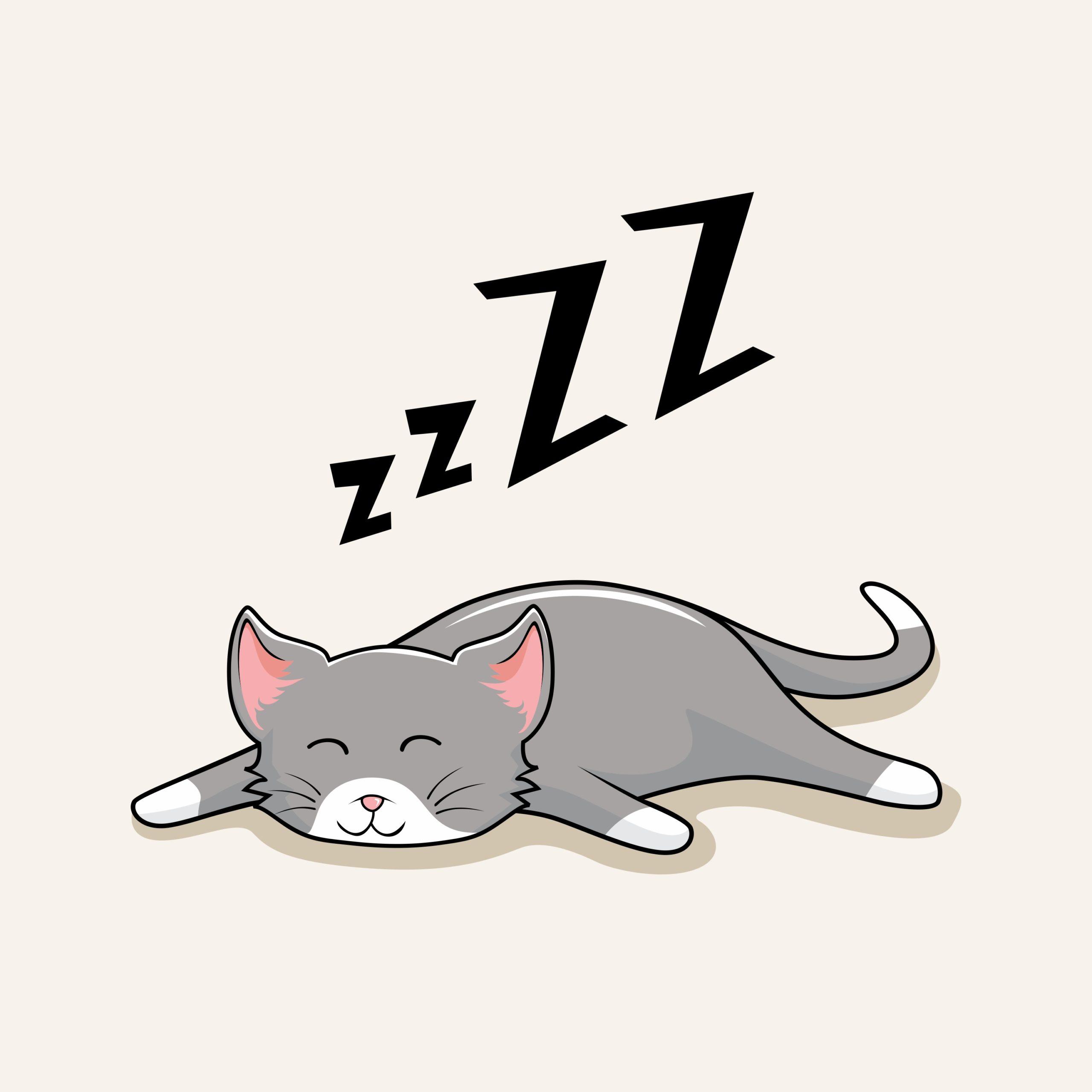 ネコのイビキの原因とは?【気になるイビキの5つの原因と対処法】