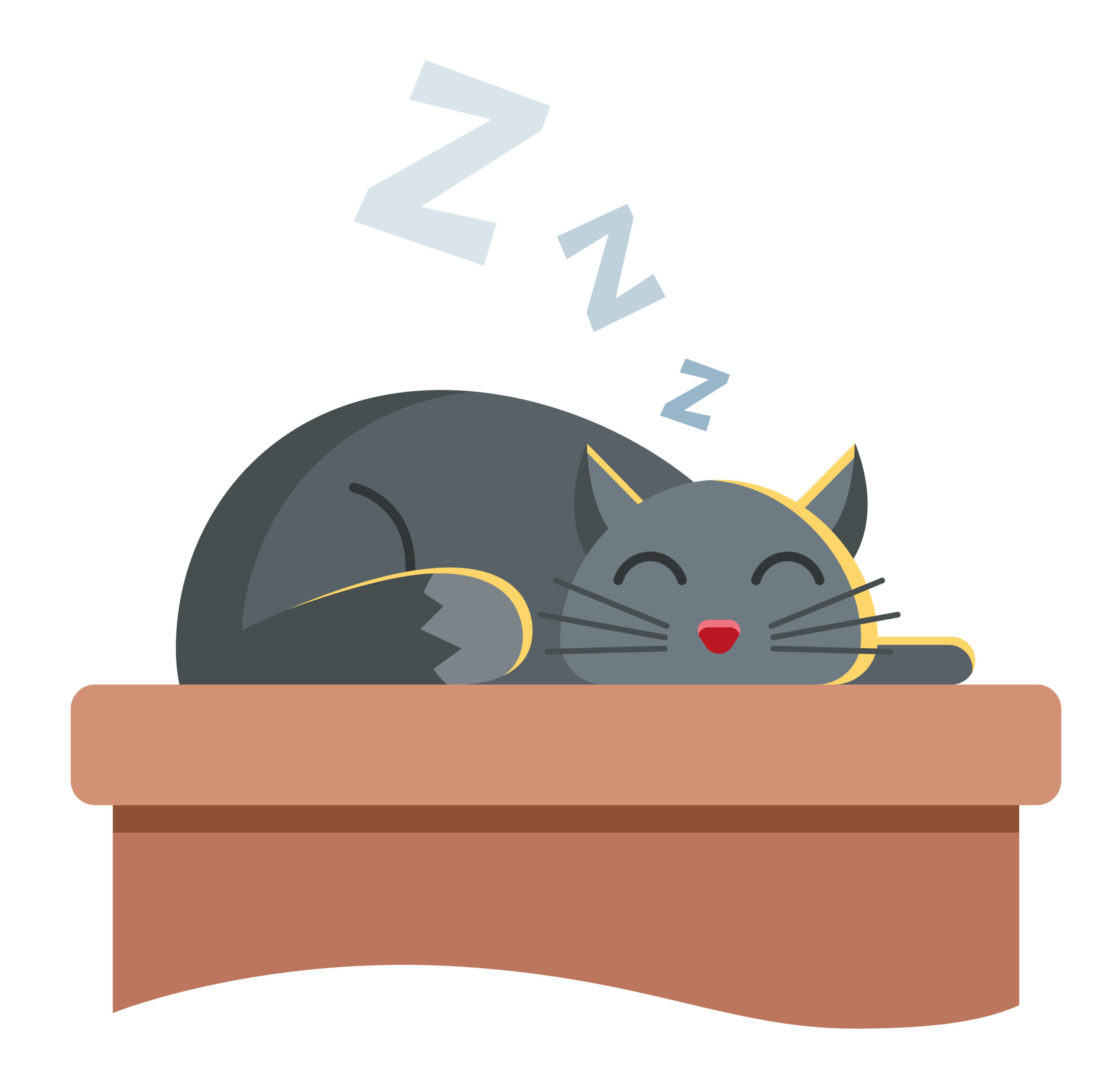 ネコのイビキの原因とは?【気になるイビキの5つの原因と対処法】:まとめ