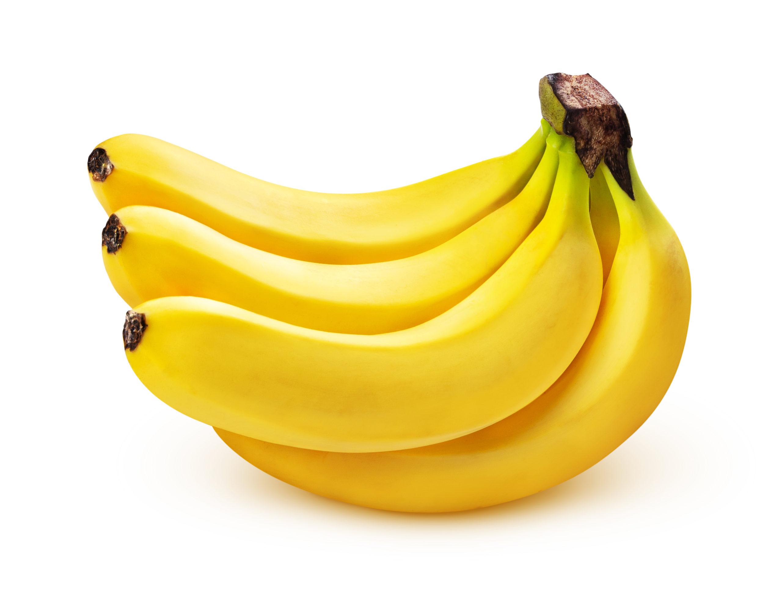 ネコはバナナを食べても大丈夫?