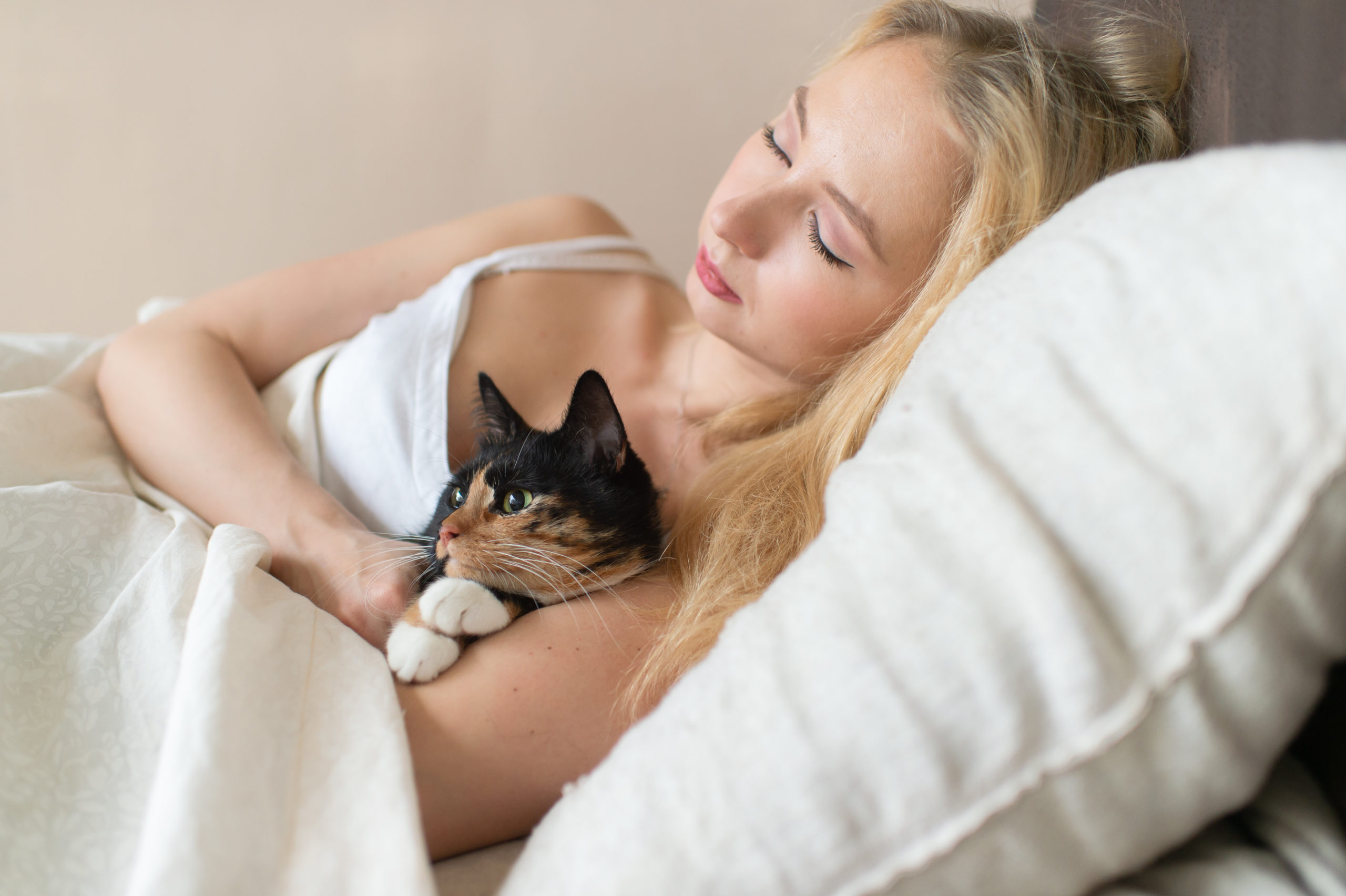 ネコの寝る場所って気になりませんか?寝る場所で分かる好感度とは?