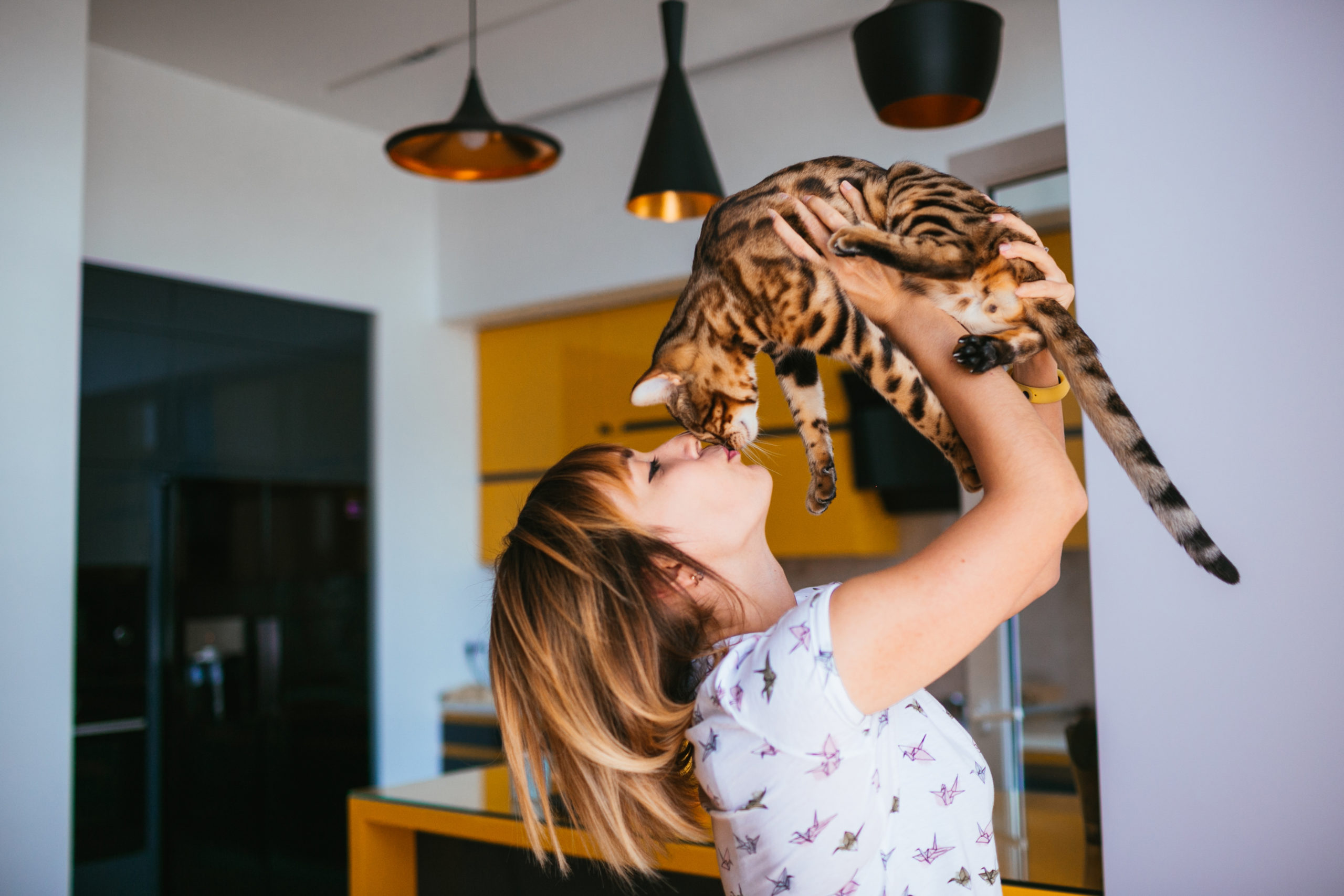ネコに好かれる人の4つの特徴