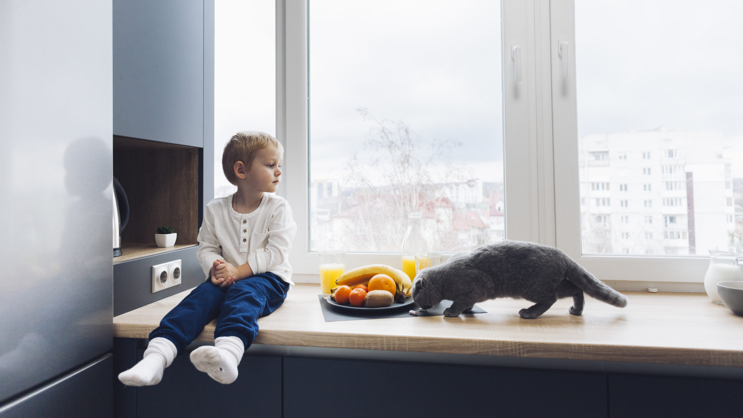 ネコへバナナを与える時の注意点