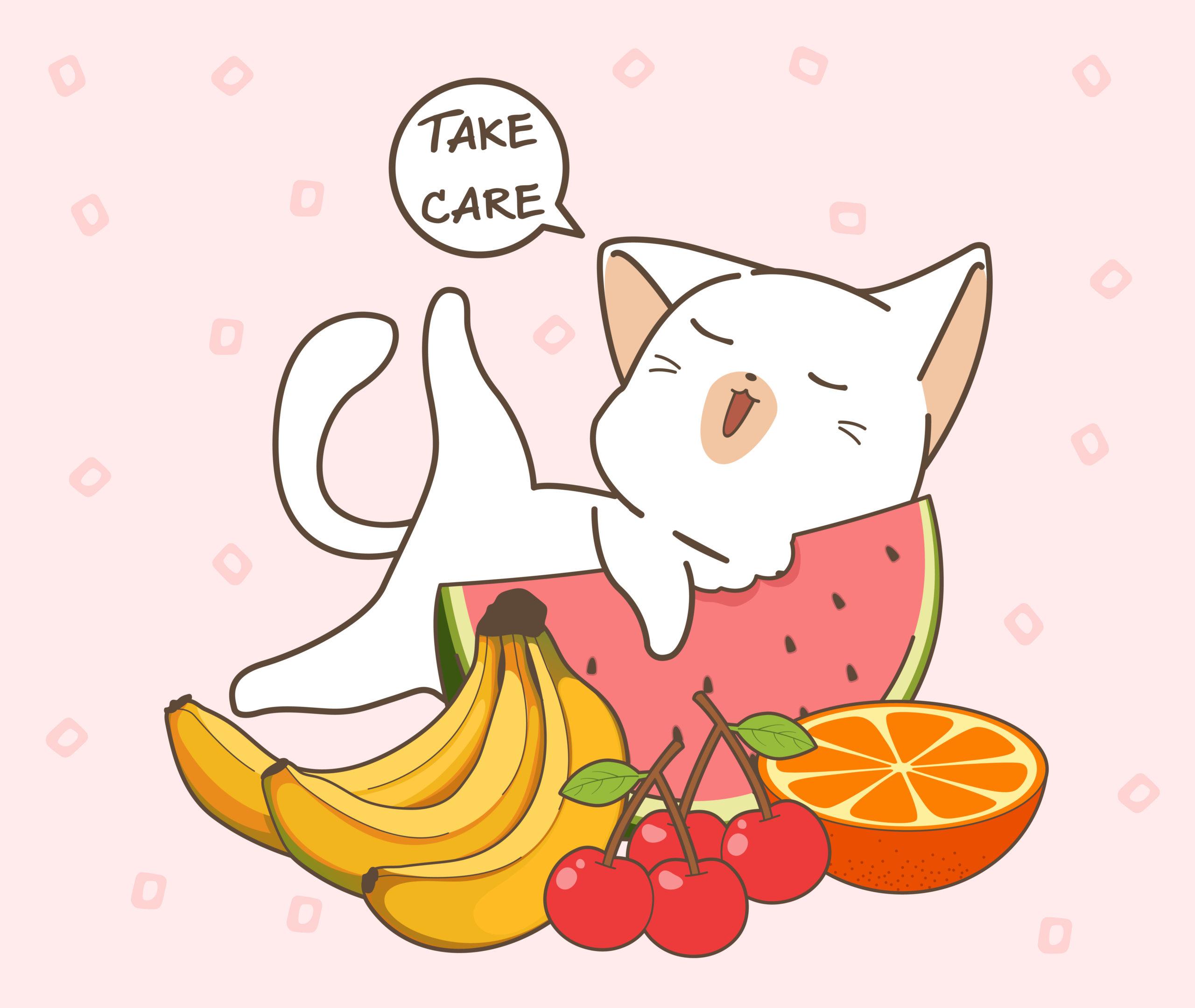 ネコがバナナを食べる4つの効果とは?