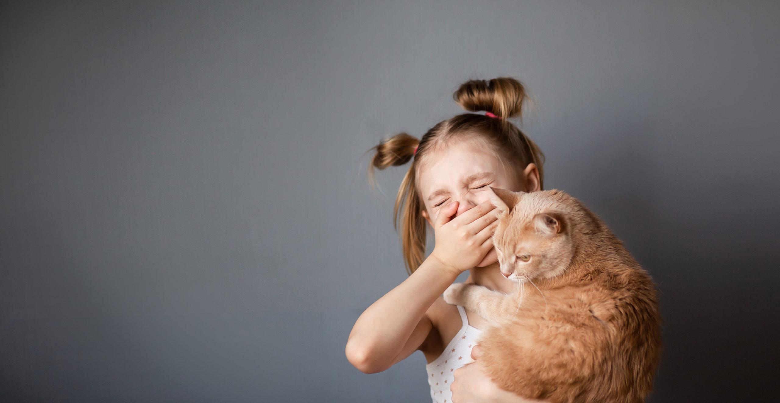 ネコのくしゃみの5つの原因とは?【 対処法は2つあります 】