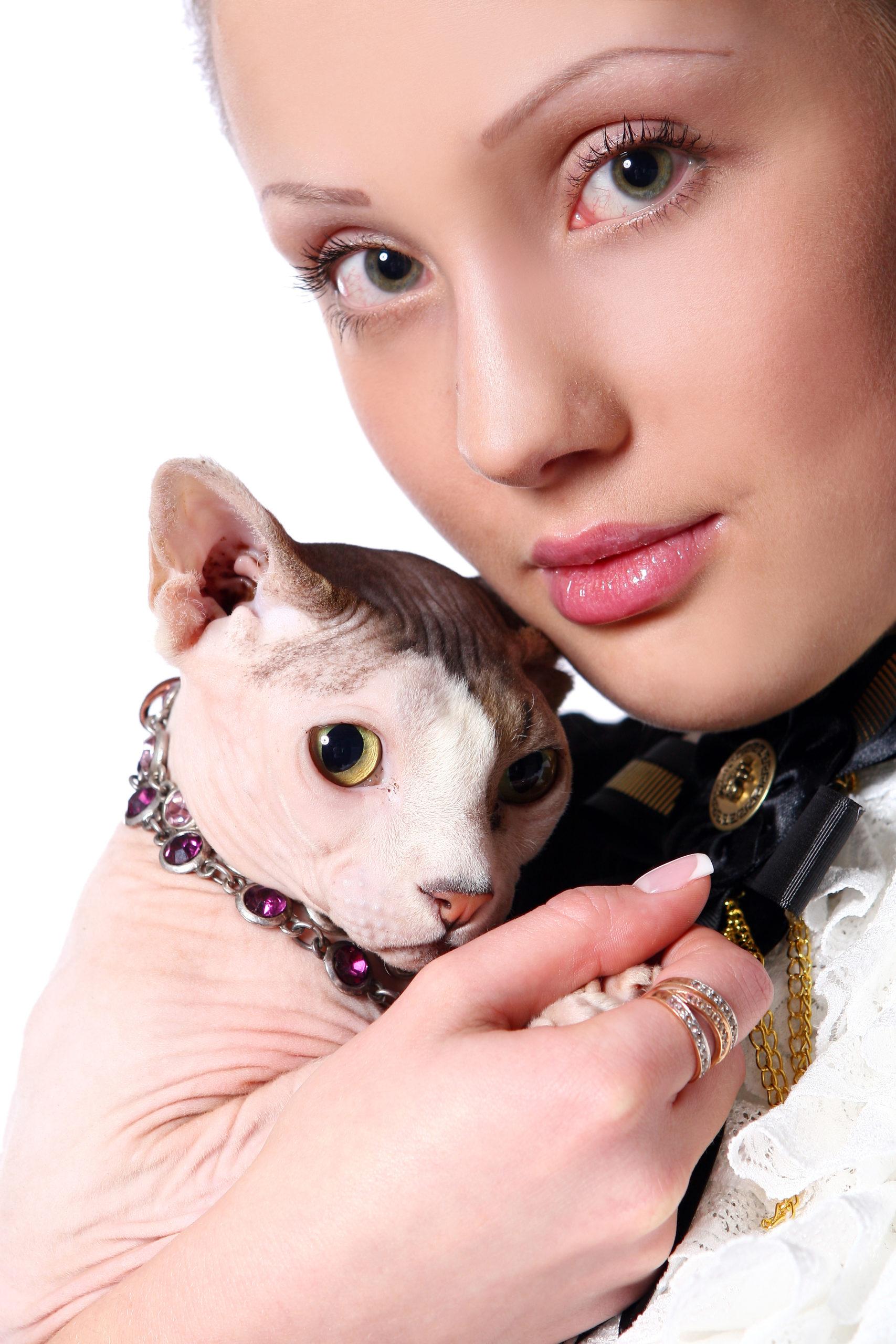 猫のおしゃれな首輪10選【4匹と共に暮らしているボクが厳選】