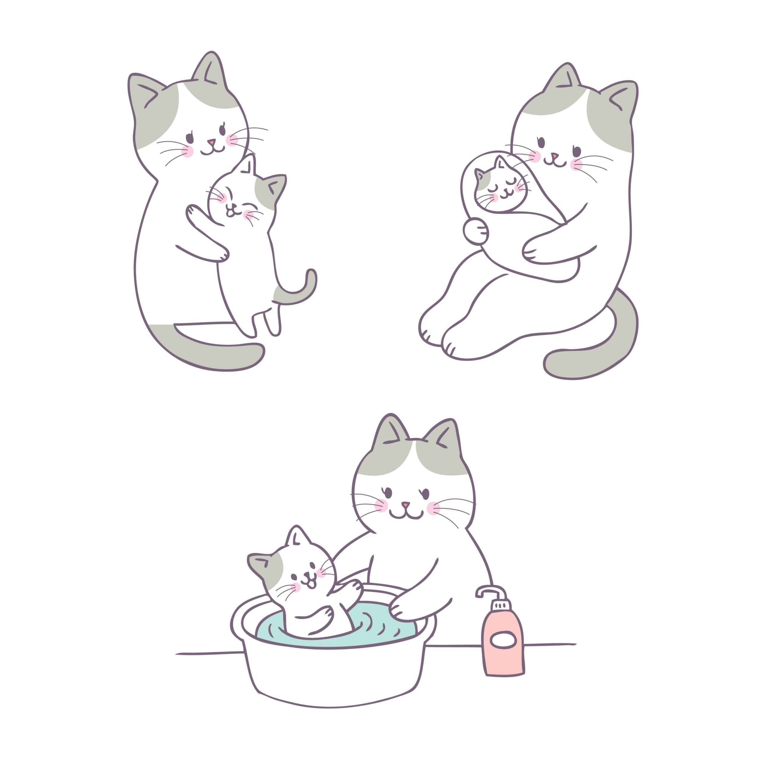 猫がお風呂に入った後の乾かし方