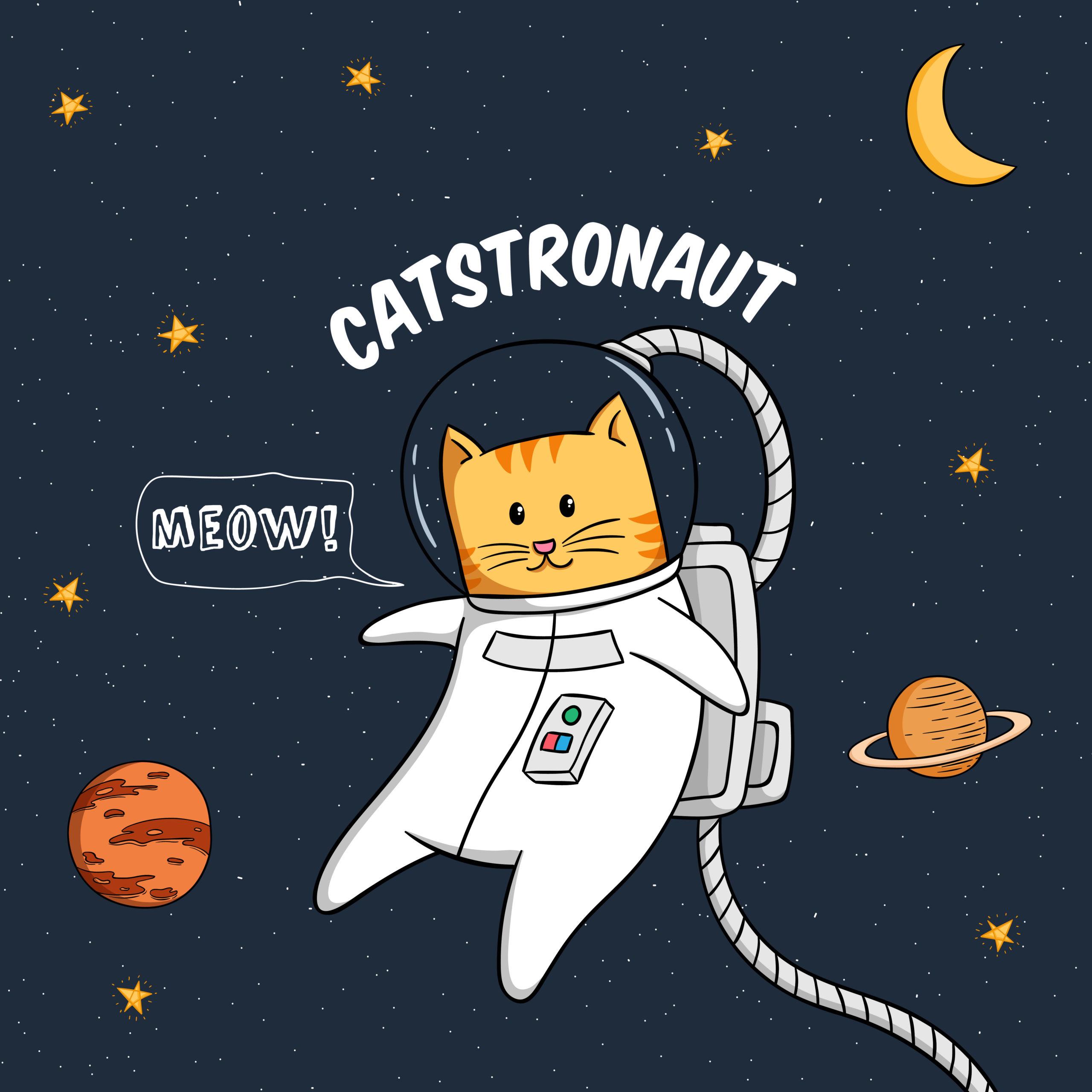 カワイイ宇宙飛行士猫