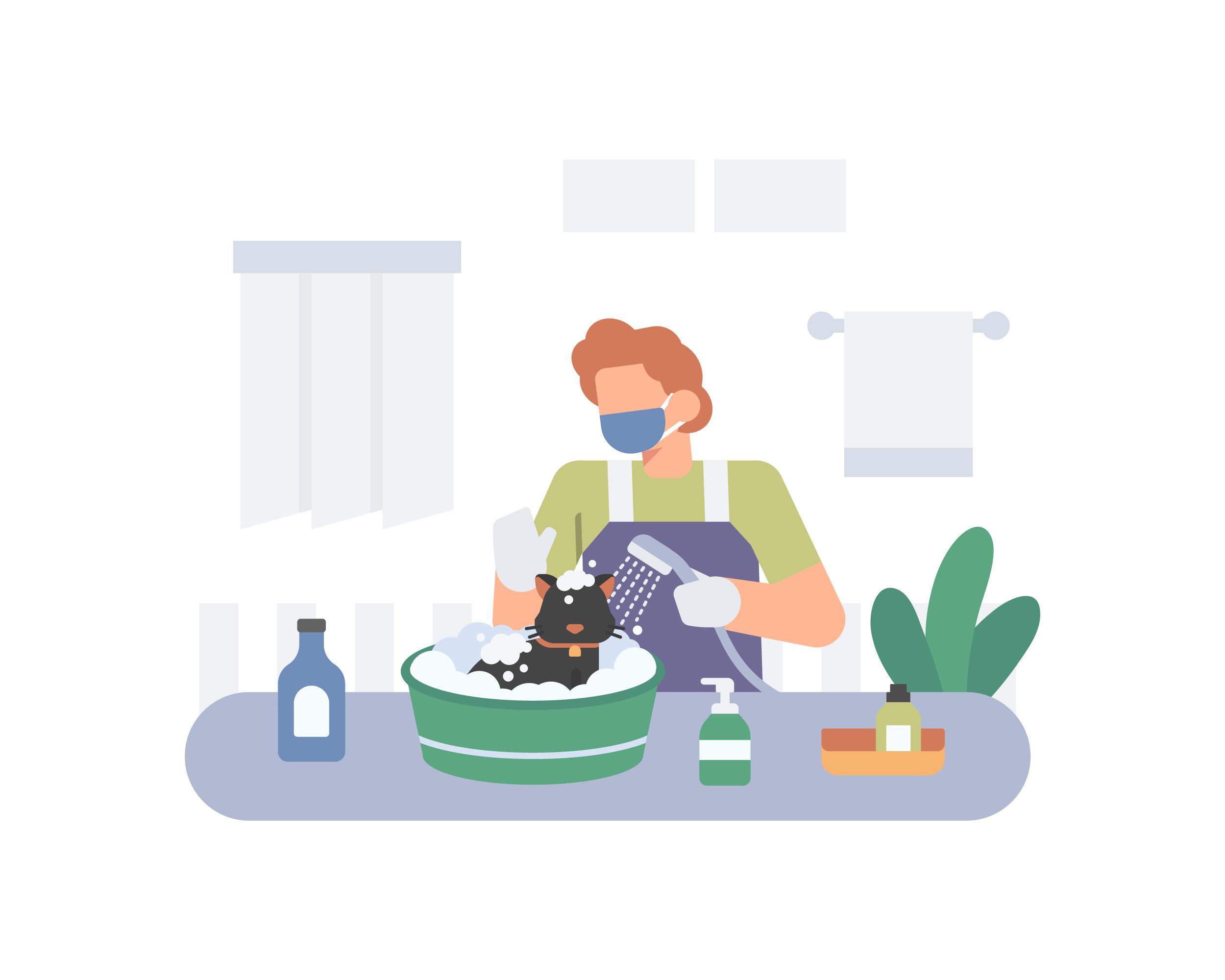猫のお風呂の入れ方