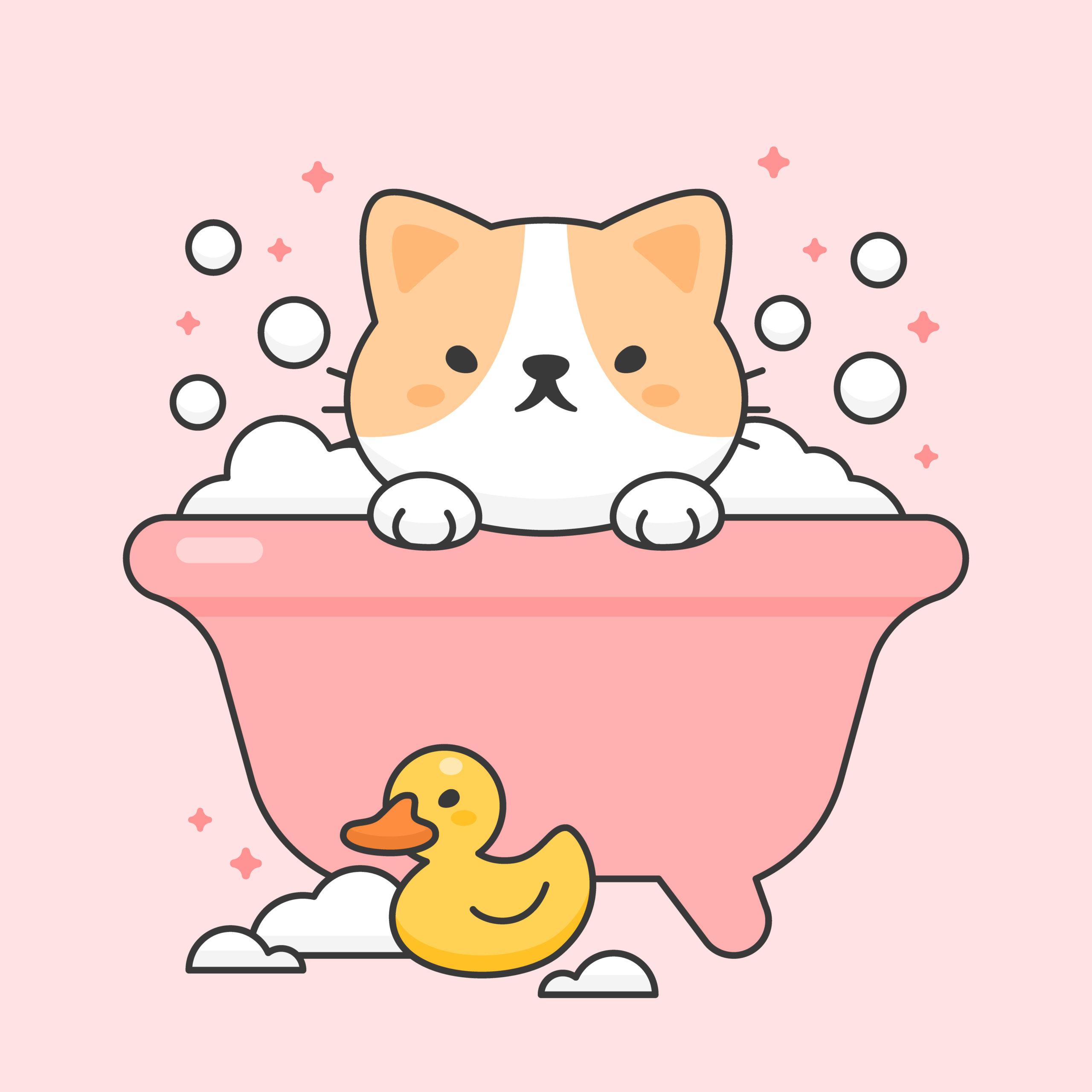 猫のお風呂の入れ方と乾かし方【猫のお風呂は本当に大変】